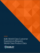 whitepaper-cover-B2B-world-class-cx